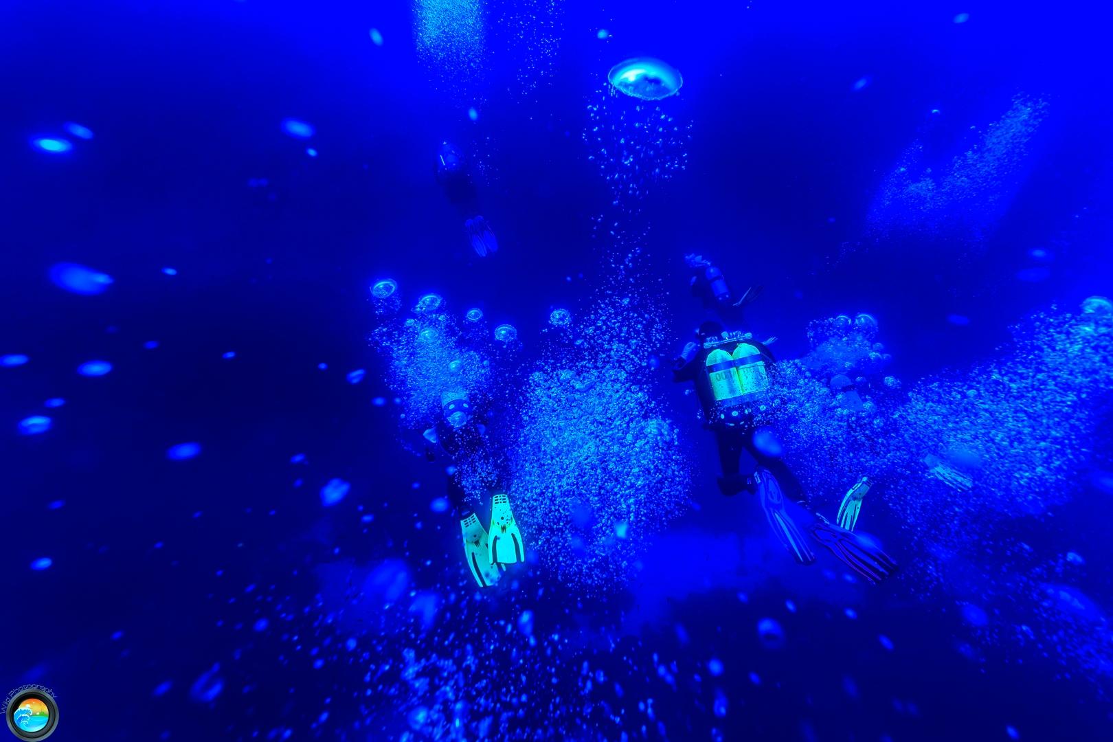 Plongée sportive Double Arches Gozo